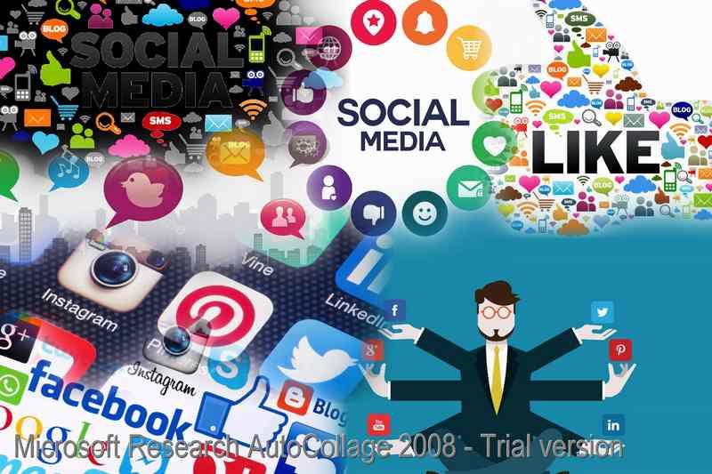 Alexahm-Social-Media-su-siti-internet-SEO-Roma